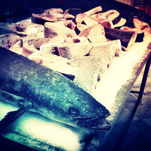 Cobia Fishing Seefood سوكلا سكن فيش Esfahan