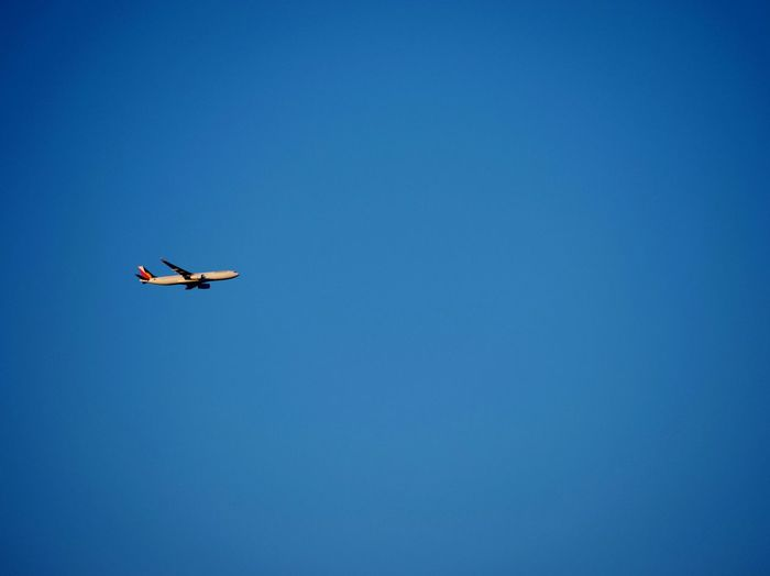 FLY Blue Air Vehicle Transportation Mode Of Transportation Airplane Flying Copy Space Sky Nature Mid-air Travel Low Angle View Clear Sky Day Motion No People Outdoors Journey Beauty In Nature on the move
