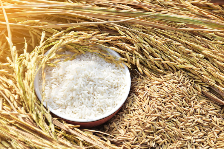 Close-Up Of Rice In Bowl
