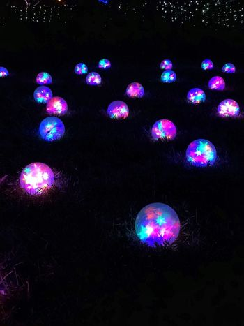 Orbs Glowing Lights Garden Glo Missouri Botanical Garden Night Illuminated Lighting Equipment Glowing Celebration Multi Colored No People Christmas Christmas Decoration
