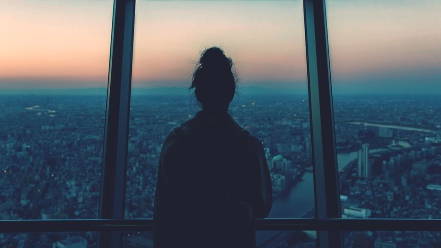 Rear view of woman looking at cityscape through window
