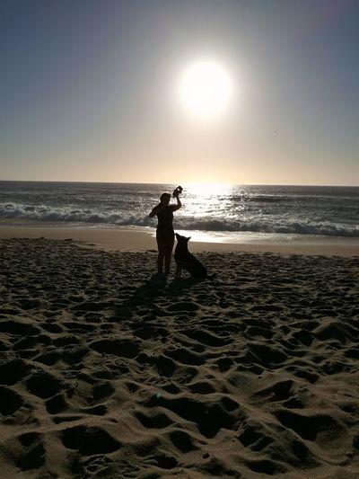 Vamos brincar Beach Sea Sand Horizon Over Water One Person Sunlight Nature Water Dog Pets Domestic Animals Pet Portrais Porto Portugal 🇵🇹 German Shepherd Porto Pet Portraits Portugal Porto Portugal Animal Themes One Animal Animal