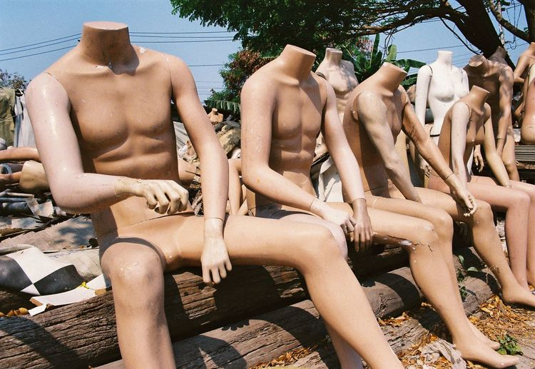 Abandoned mannequins on logs