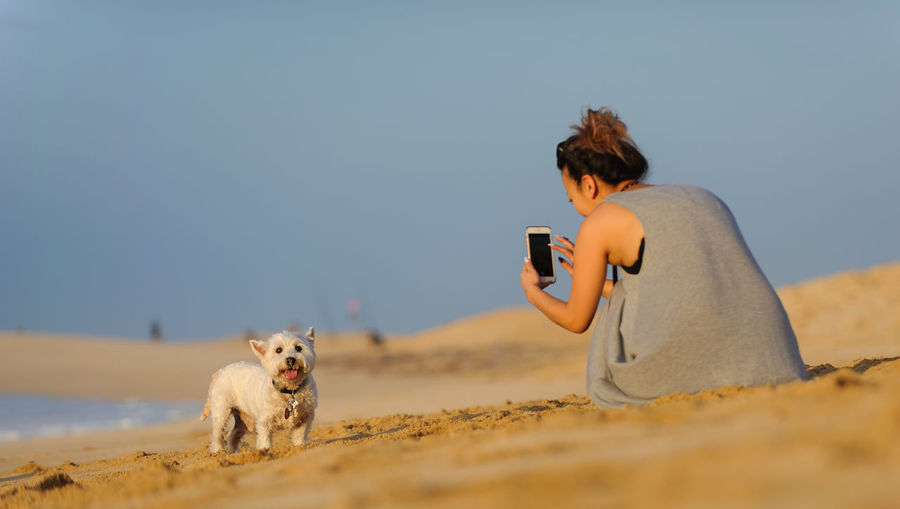 Dog on mobile phone against sky