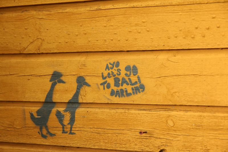 Bali Close-up Conversation Creativity English Geese Graffiti INDONESIA No People Speeking Geese Two Geese Wood - Material Wooden Wooden Texture Wooden Texture Background Yellow Yellow Wooden Wall