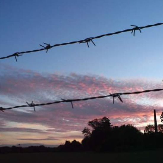 Barbedwire Sky Evening RedClouds  Fields