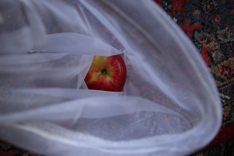High angle view of apple in net