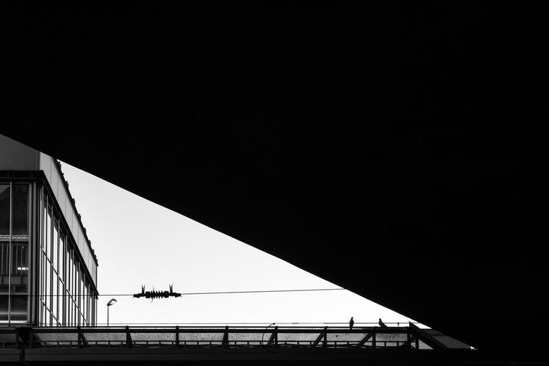 Silhouette of rooftop at a trainstation forming a triangle of light and silhouette of two pigeons sitting on railing Black And White Architecture Built Structure Sky Bridge Connection Copy Space Railing Bridge - Man Made Structure Transportation Building Exterior Nature Low Angle View Silhouette Day No People Clear Sky Outdoors Power Cable Cityscape Triangle Shape Station Ceiling Rooftop Pigeon Low Angle View Modern City Transportation Public Transportation S-bahn Pattern Railroad Station Railing City Life