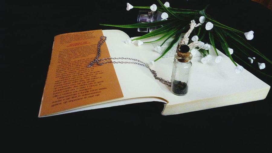 Book Booklover