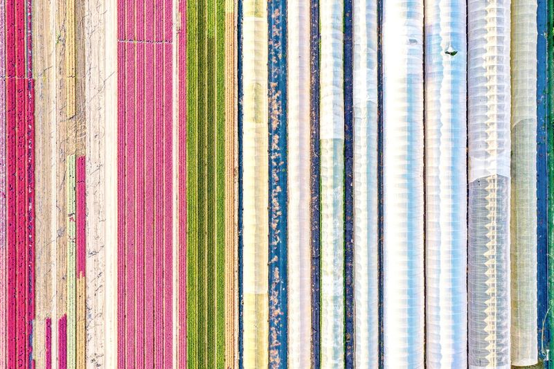 Full frame shot of multi colored pencils in store