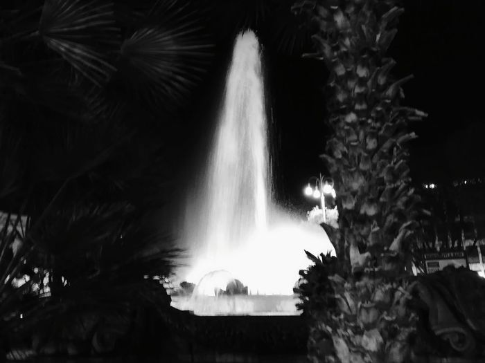 Water Tree Astrology Sign Motion Power In Nature Blurred Motion Fountain Palm Tree