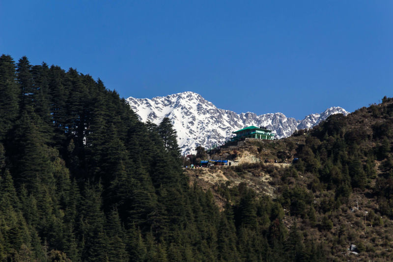 Good Morning 🌞 Mountain Nature Blue Sky Mountain Peak Himalayan Range Tree View From Hotel Balcony Outdoors Day No People Dharamshala
