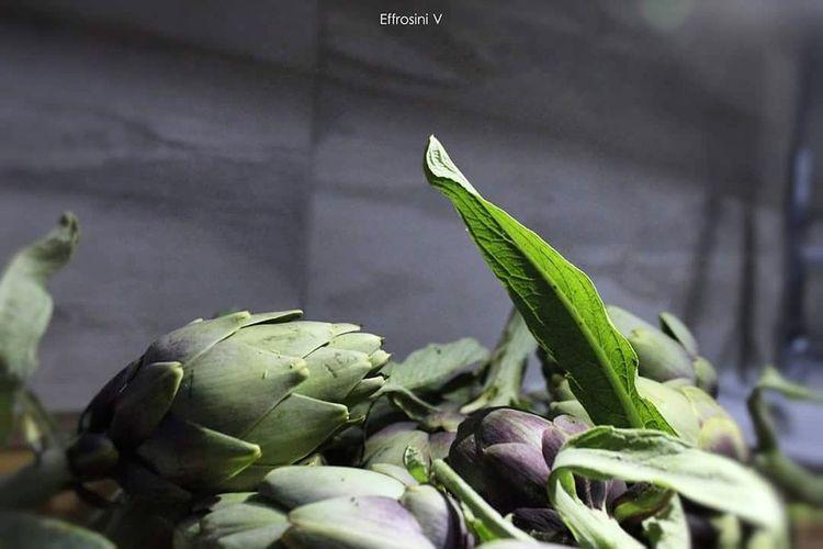 Cynara Cardunculus Artichoke Vegetable Healthy Eating Food Green Color Plant Leaf Close-up Nature Freshness