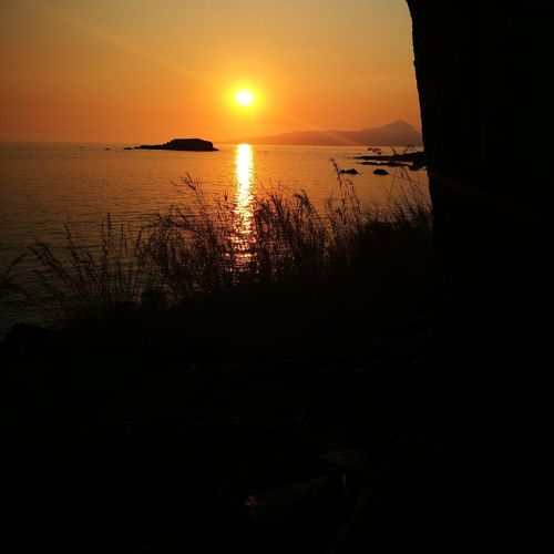 Sunset Sea Beauty In Nature Scenics Horizon Over Water Beach Tranquility No People Reflection Outdoors Tree Sunlight Summer Perspectives On Nature
