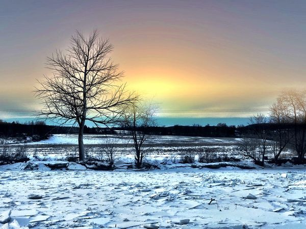 Winter Cold Temperature Snow Bare Tree Nature Beauty In Nature Sunset Sky Tranquil Scene Scenics Tranquility Weather Frozen No People Tree Outdoors Cold Water Day