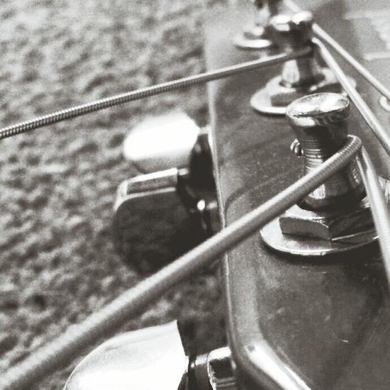 Strings Music