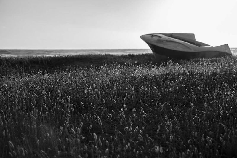 Grass Transportation Tranquil Scene Clear Sky Tranquility Nautical Vessel Horizon Over Water Scenics Water Beauty In Nature Calm Boat Mode Of Transport Nature Field Plant Growth Day Solitude Sea Blackandwhite Black And White Black & White Beautiful Nature B L A C K A N D W H I T E