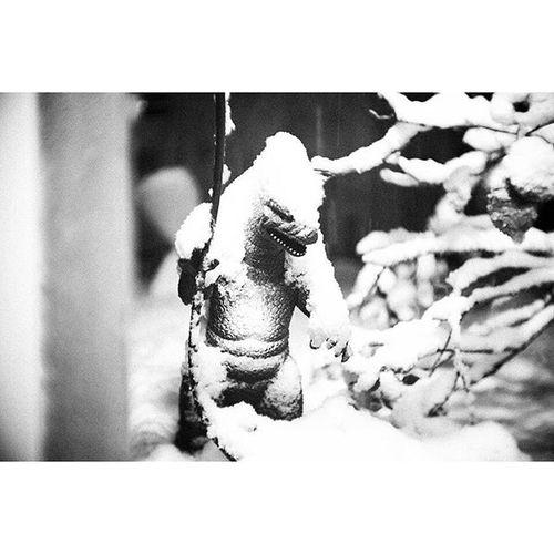 | Gojira | Gojira Godzilla Kaiju Eiga Kaiju Kaijin Daikaiju Tokusatsu Parthenogenesis HaruoNakajima Toho Showa  Heisei Millennium Hirohito Snow Winteriscoming Fuji FujiX Fujixpro1 Xpro1 Fujian Fujian35mm Bw Blackandwhite StreetPhotography