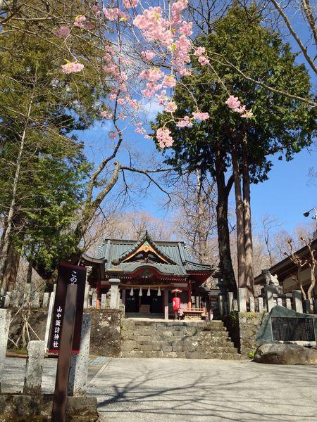 山梨 山中湖 山中諏訪神社