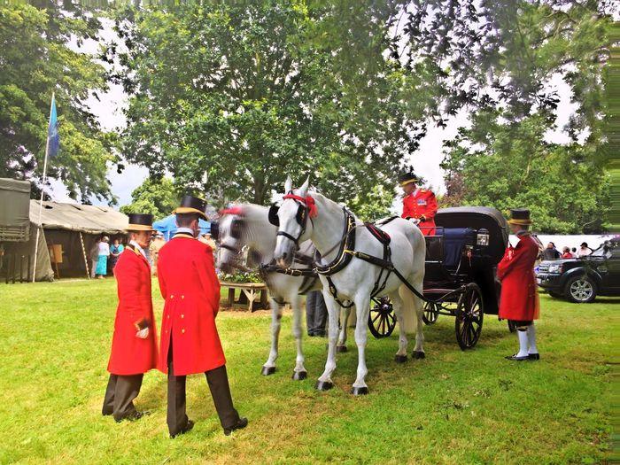Men in red uniform by horse cart on grassy field