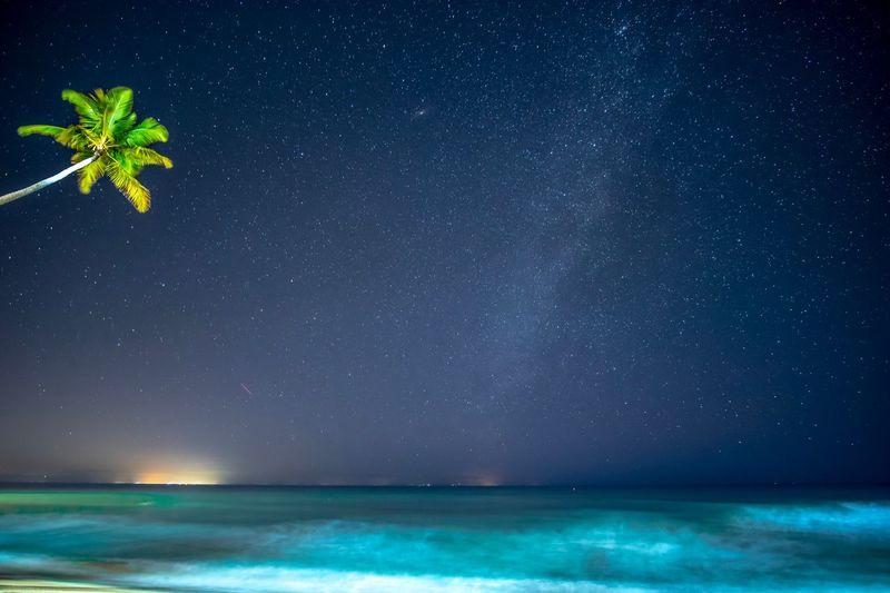 Andromeda Milky