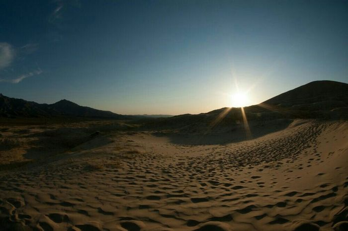 the Desert is no Lonely place. @ Kelso Dunes Mojave National Preserve, CA