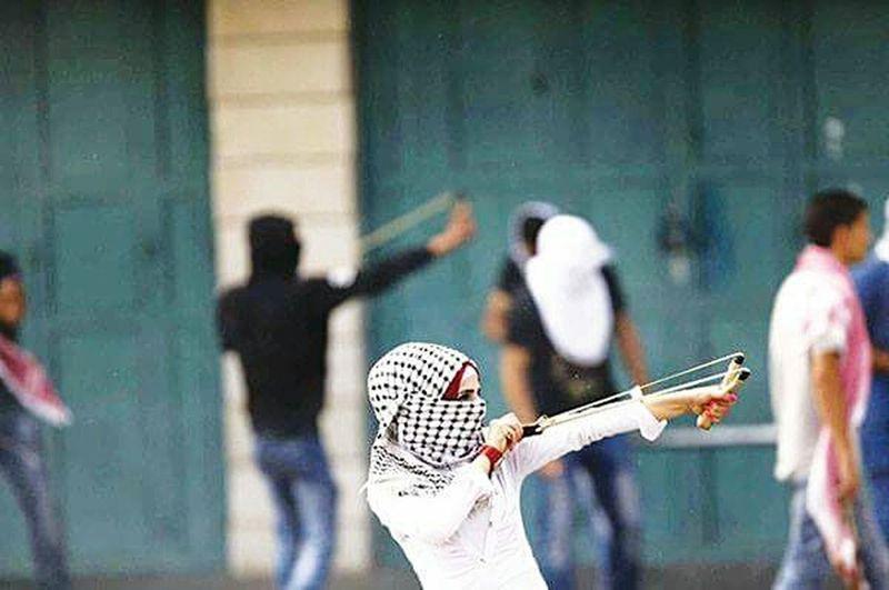 First Eyeem Photo Free Palestine