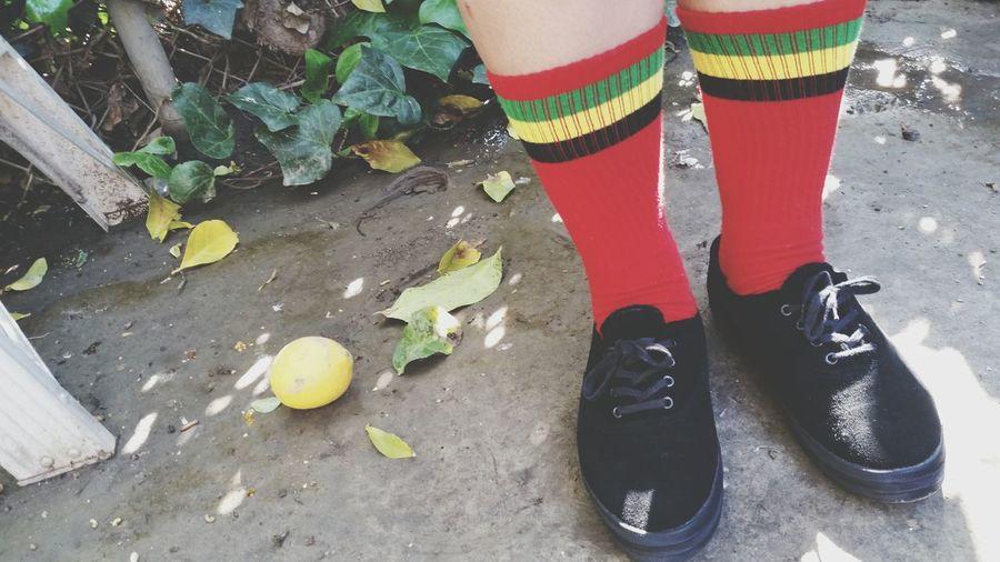 when life gives you lemons.... Life Nature Lemons Socks Irie