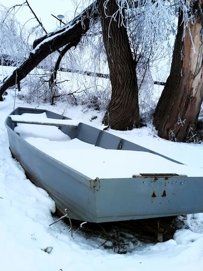 Snow Cold Temperature Winter Tree Nature Frozen Water Outdoors Tranquility No People Landscape Tree Trunk Extreme Weather Lake Day Beauty In Nature Sky Frozen Water Snowing Boat Live For The Story Snow ❄ River Sava