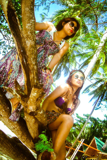 Fashion Palm Tree Adult Beachphotography Beautiful Woman Beauty Fashion Fashion Photography Hair Hairstyle Leisure Activity Lifestyles Low Angle View Model Nature Plant Portrait Real People Sitting Tree Women Young Adult Young Women