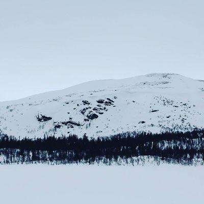 Baelhtere Oviksfjällen Glensjön Trädgräns Outdoors Stillwinter Sapmi Balsamförsjälen InTheMiddleOfNoWhere Canon Myamazingbackyard