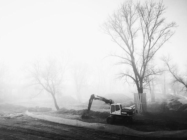 Renovations near Bundek Park, Zagreb, Croatia, 2016. Renovations Construction Bundek Park Zagreb Croatia Fog Morning Mist Early Morning Trees Foggy Quiet Serenity Calm Land Vehicle Construction Machinery Machine Adapted To The City