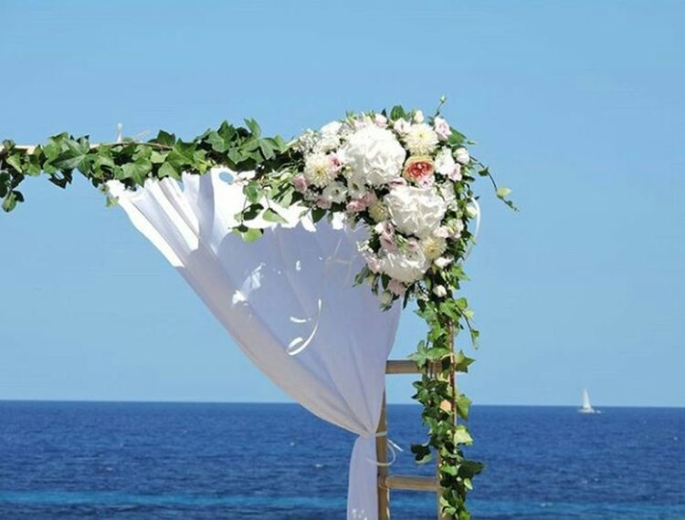 July Wedding Eivissa Nature Blue Showcase July
