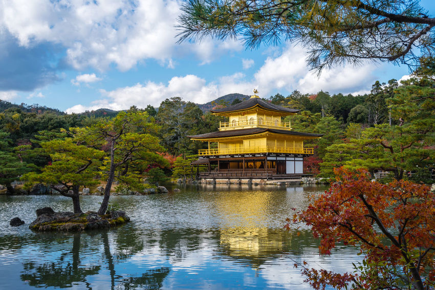 Kinkakuji Temple (The Golden Pavilion) with autumn maple in Kyoto Pagoda Pond Shrine Architecture Autumn Beauty In Nature Building Exterior Built Structure Cloud - Sky Day Golden Pavilion  Kinkakuji Lake Landmark Nature No People Outdoors Place Of Worship Religion Scenics Sky Temple Travel Destinations Tree