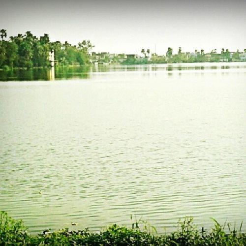 Noeffect Water PaniPani Green Pond Darbhanga