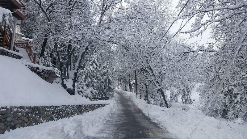 Brrrr! Snow Whiteout Subzero Winter Wonderland