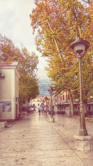 Autumn 2015 Autumn Colors Autumn🍁🍁🍁 Autumnbeauty Trees Trebinje Mypointofview Bosnaahercegovina Colors Streetphotography