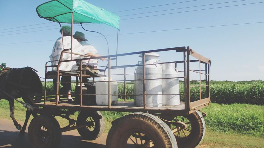 Friends sitting on horse cart with milk canisters against sky