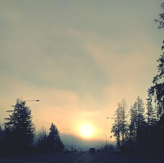 The sun showing through fog Cold Temperature Road Sky Outdoors Landscape Day Scenics Sun Through Fog Amazing Nature Google Pixel PNW Photography The Week On EyeEm Look At The Sun Fall Morning Car