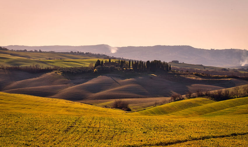 Val D 'Orcia Landscape Scenics - Nature Environment Tranquil Scene Beauty In Nature Agriculture Rural Scene Rolling Landscape Outdoors Growth Farm Idyllic Field Land Golden Hour