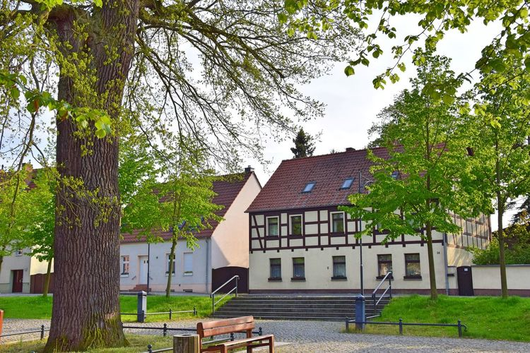 Alt Ruppin Freshness Half Timbered House Historical Building Old Buildings Place Spring Tranquility Tree