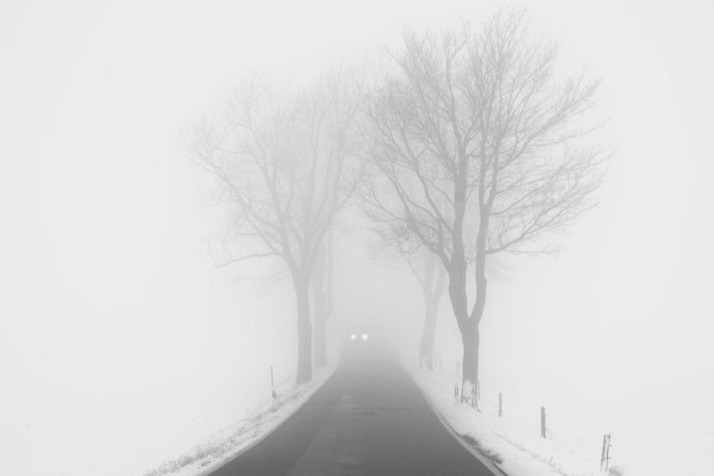 Copy Space EyeEm Best Shots Lights Road Silhouette Bare Tree Beauty In Nature Blackandwhite Branch Car Cold Cold Temperature Day Fog Nature No People Outdoors Sky Snow Snowing The Way Forward Tranquility Tree Weather Winter