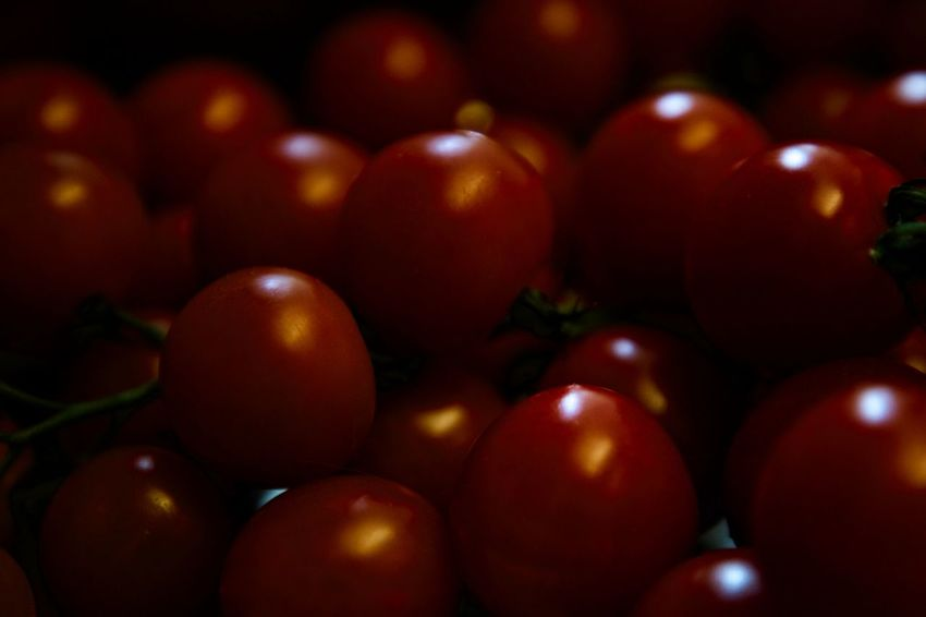 tomatoes Backgrounds Close-up Dark Day Food Food And Drink Fresh Freshness Fruit Full Frame Garden Healthy Eating Indoors  No People Product Red Selective Focus Tomato Tomatoes Vegetable Vegetarian