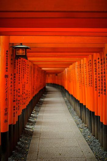 Torii Leading To Fushimi Inari Shrine
