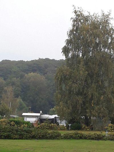 Camping Schleswig-Holstein Großer Plöner See Bösdorf Schleswig-holsteinische-schweiz Erholung Pur