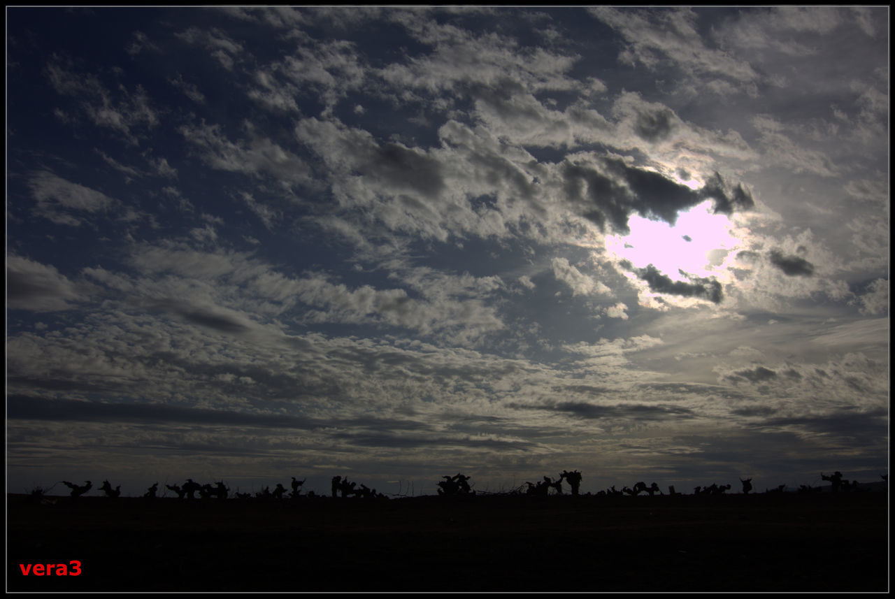 cloud - sky, sky, silhouette, nature, beauty in nature, sunset, outdoors, scenics, no people, tranquility, tree, day