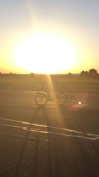 Cordelia Bicyclist at Sunrise