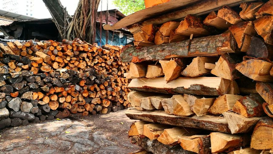 Abundance Log Large Group Of Objects Timber Lumber Industry Deforestation Woodpile Stack Heap Wood - Material Fossil Fuel Pile Forestry Industry No People Representing Food Outdoors Day