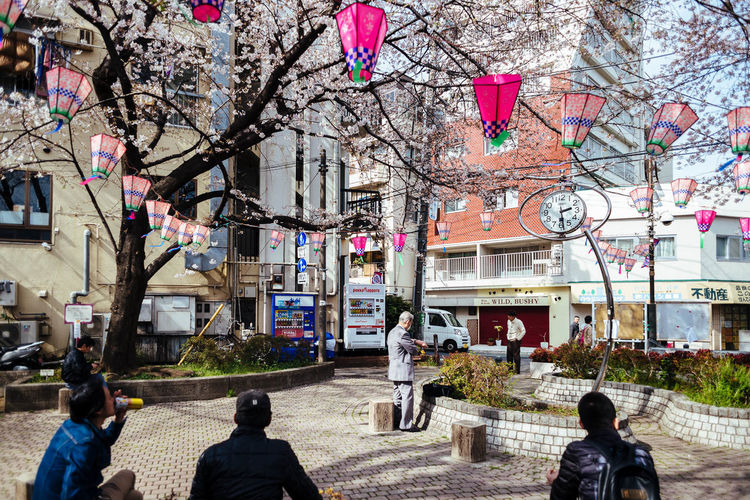 Cherry Blossoms in Hatagaya Architecture Bare Tree Branch Building Exterior Built Structure City City Life Day Flower Men Nature Outdoors People Real People Sakura Sky Tree Women