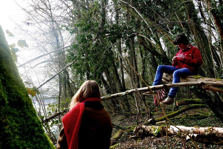The little red riding hood Friendship Hood Trees Redscarf Redcoat